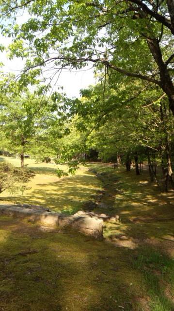 創作の森森のアートフェスタ